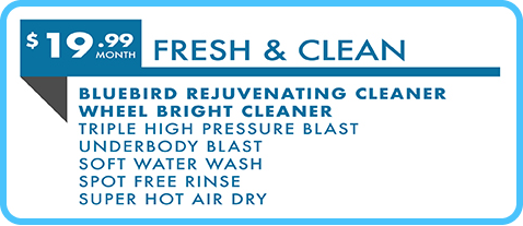 Bluebird Signature Wash
