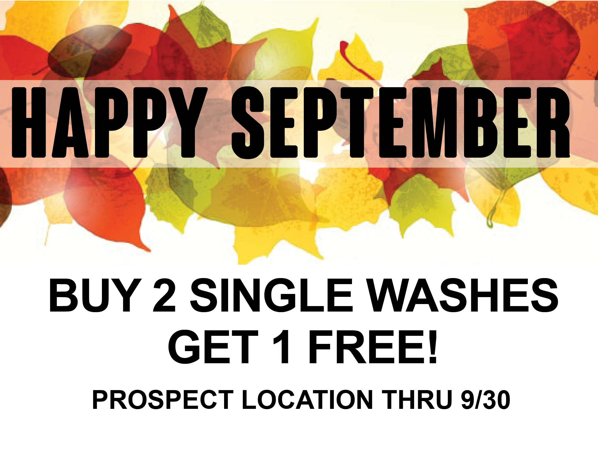 Buy 1 Wash Get 2 Free of Same Type